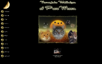 Puremoon-Cats.de designed by Maxco-Computer